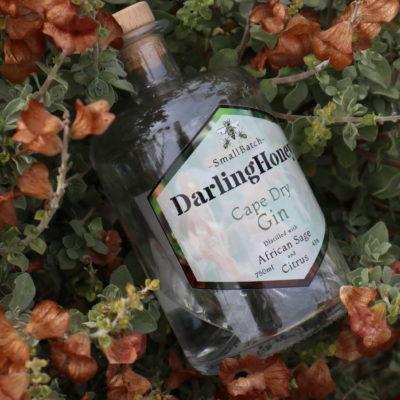 Cape Dry Gin